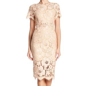 NWOT NSR Beige Lace Short Sleeve Sheath Midi Dress